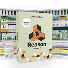 Reason 11.3.5 for window