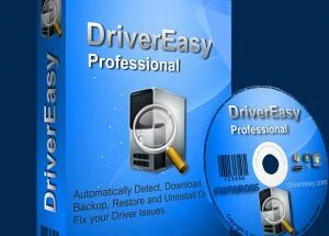 Driver Easy Pro 5.6.15 Crack + License Key Torrent (2021)